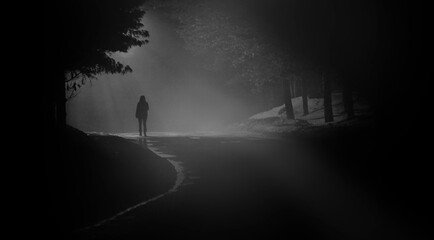 Fototapeta A person walk into the misty foggy road in a dramatic mystic scene. Mysterious alone woman walking in the mist. Banner with copy space for text.