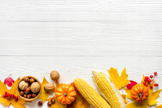 Autumn top view background with pumpkins corn and nuts