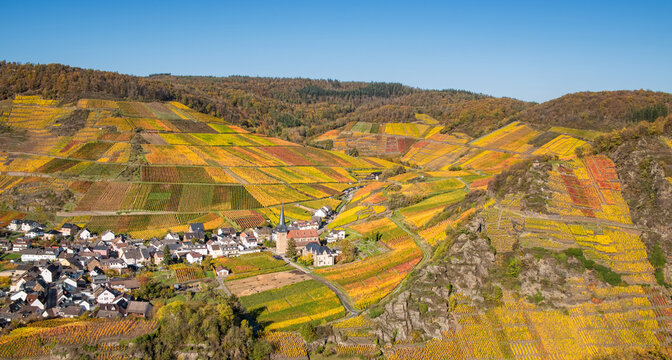 Wine village Mayschoss in the Ahr valley with fall colored vineyards on the south-facing terraced slopes in autumn, Eifel, Rhineland-Palatinate, Germany