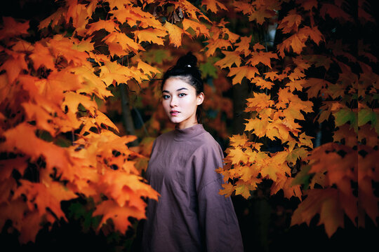 Portrait of woman standing amidst autumn leaves