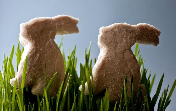Close up of marshmallow pomegranate bunnies