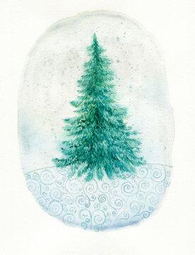 Watercolor decorative fir