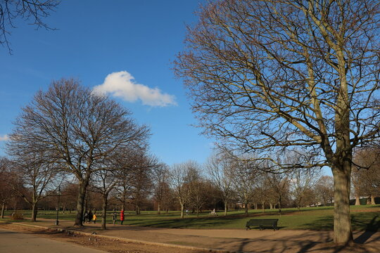 The Hyde Park in winter in London, England