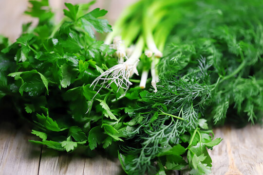 Selective focus. Macro. Fresh greens on a wood surface. Dill, parsley, green onions. Green herbs for preparing healthy meals.