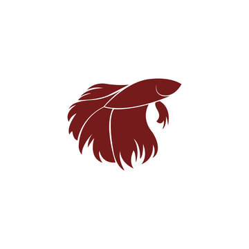 Betta Fish Logo Design. Betta fish vector
