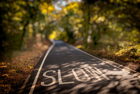 Slow Sign Painted in the Road on a Country Lane, Essex, Britain