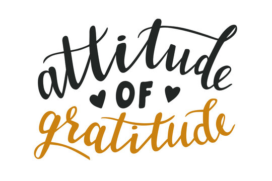 Attitude of gratitude hand lettering vector for fall, autumn and Thanksgiving day season quotes and phrases for cards, banners, posters, pillow and clothes design.