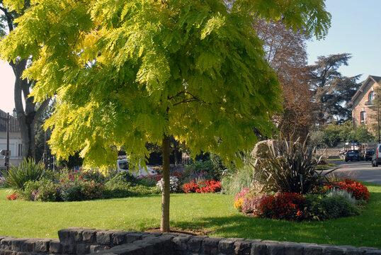 Ville de Villiers-sur-Marne, jardin fleuri en centre ville, département du Val-de-Marne, France