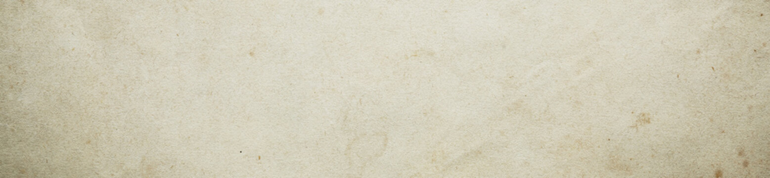 simple paper texture. high-resolution image.