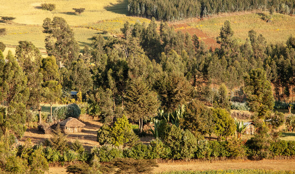 A traditional Ethiopian home sits on farmland in the remote highlands,