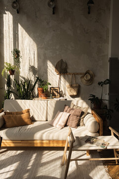 Warm boho style modern home interior design, Sofa, pillows, home plants, carpet and decorations against concrete wall,