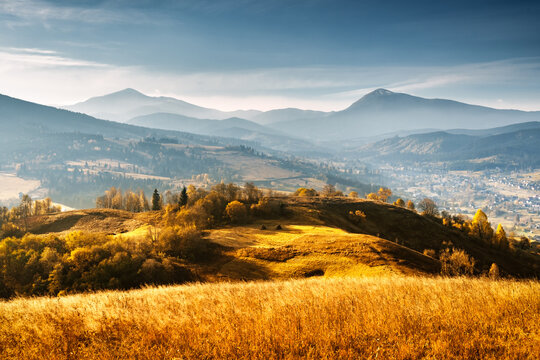 Picturesque autumn mountains with yellow grass and orange trees in the Carpathian mountains, Ukraine. Landscape photography