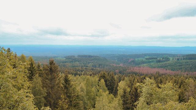 Trudenstein Ausblick über Harz Landschaft