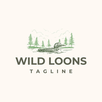 Wild loons bird swimming in lake with pines forest in background logo design template
