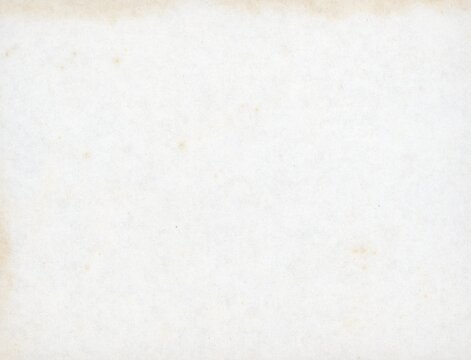 old blank foxed paper texture
