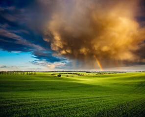 Wall Mural - Dramatic scene of ominous stormy clouds over the green field in springtime.