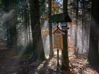 Pieninski Park Narodowy - szlak na Trzy Korony