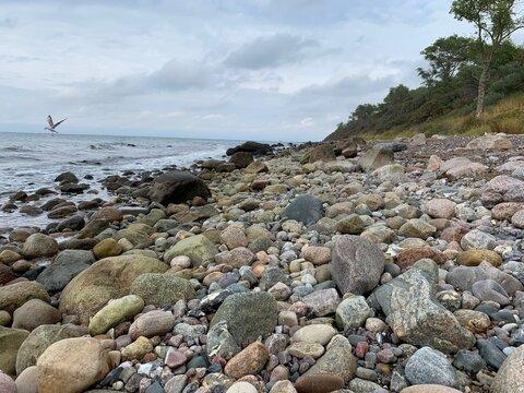 Ostseeküste bei Rerik