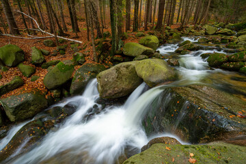 mountain river with beautiful waterfall in autumn forest