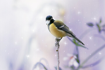 Wall Mural - Portrait Of Tit Bird Sitting On Branch on Fantasy Mysterious Spring Forest Background With Shining Glowing Stars, Fabulous Fairy Tale Floral Garden with Cute Songbird, Beautiful Artistic Toned Image.