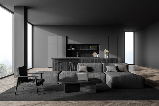 Dark gray living room with sofa