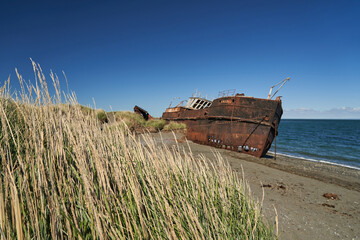 old rusty and rotten ship wreck with holes in its carcass, lying behind long gras on the beach of the coast line of the Strait of Magellan in Patagonia, south America, abandoned places