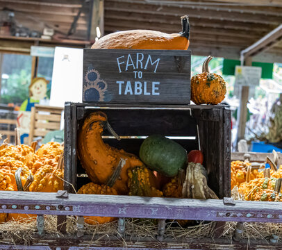 Farm to Table Farm to Fork