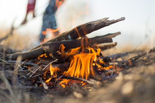 light a fire in nature for food