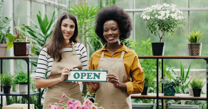 Happy mixed-races women florists in aprons standing in own floral shop and smiling to camera with Open sign in hands. Caucasian and African American females reopening flower store. Portrait concept