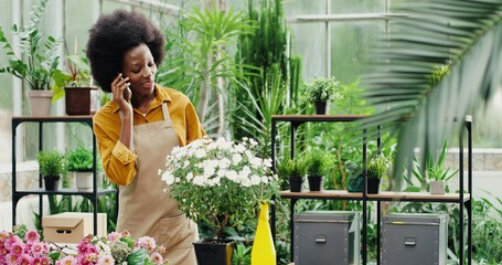 Obraz Joyful young woman in flower shop standing at workplace and calling on cellphone. Cheerful African American female florist worker in floral house chatting on smartphone. Floristry concept - fototapety do salonu