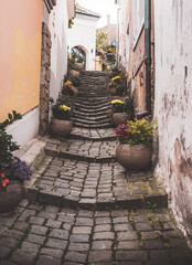 Old narrow street with stairs and flowers