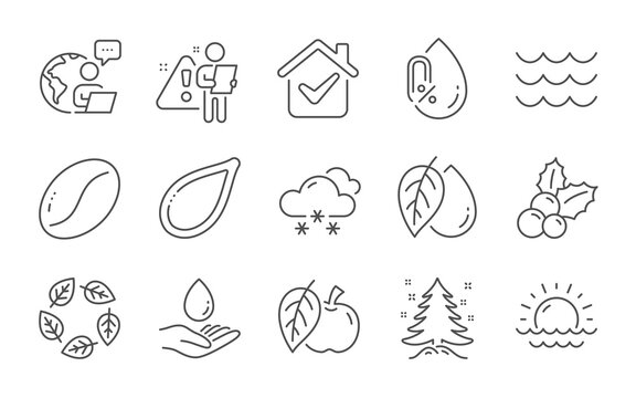 Water care, Organic tested and Snow weather line icons set. No alcohol, Pumpkin seed and Christmas holly signs. Waves, Christmas tree and Mineral oil symbols. Sunset, Apple and Coffee beans. Vector