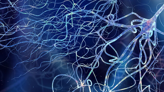 Human brain cell neuron close up in abstract space