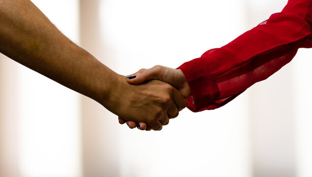 A woman in a red blouse, and a man shake hands as if they agreed, made a deal or met, all against a clear background.