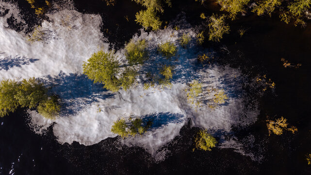 Drone shot of trees flooded by the river