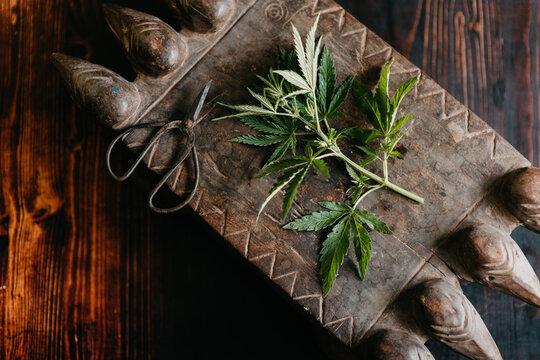 Cannabis still life