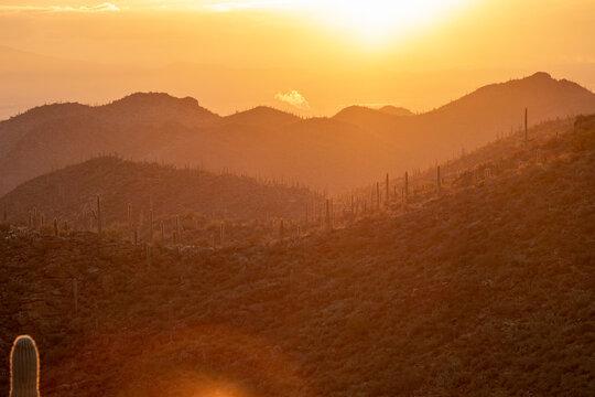 Warm tones of sunrise over a desert mountain landscape at Gates Pass A