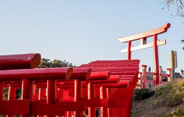 A spectacular view of many torii gates at Motonosumi Shrine in Nagato City, Yamaguchi Prefecture