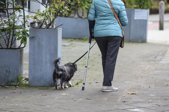 femme vieux senior retraite handicapé santé canne bequille infirme chien