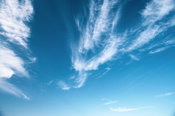 Wall Mural - Abstract sky background with white clouds in the fresh sunny day.