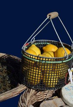 Citrons jaune dans un panier