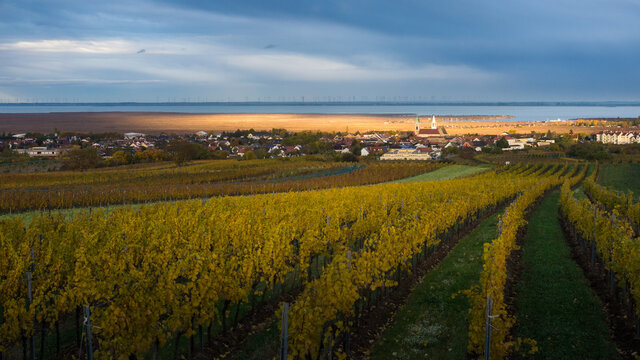 View on vilage of rust in Burgenland with lake neusiedlersee