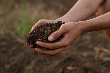 Hand of professional farmer hold soil from ground, examination of quality to prepare grow seedling of vegetable at organic farm.