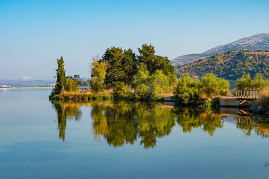 Trees are reflecting into the calm waters of koutavos lagoon in Kefalonia Greece