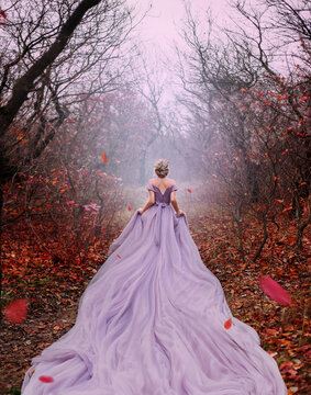 Art fantasy beautiful woman queen walk in autumn mystic forest, orange leaves bare trees. Magic light divine glowing in gothic fog. Girl lady princess. Medieval purple dress long train. back rear view