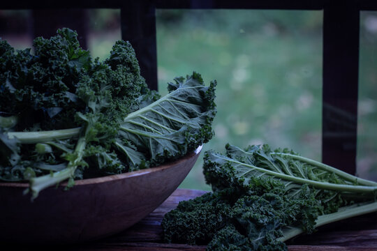 Green Kale leaves in Rustic wooden on windows licht background