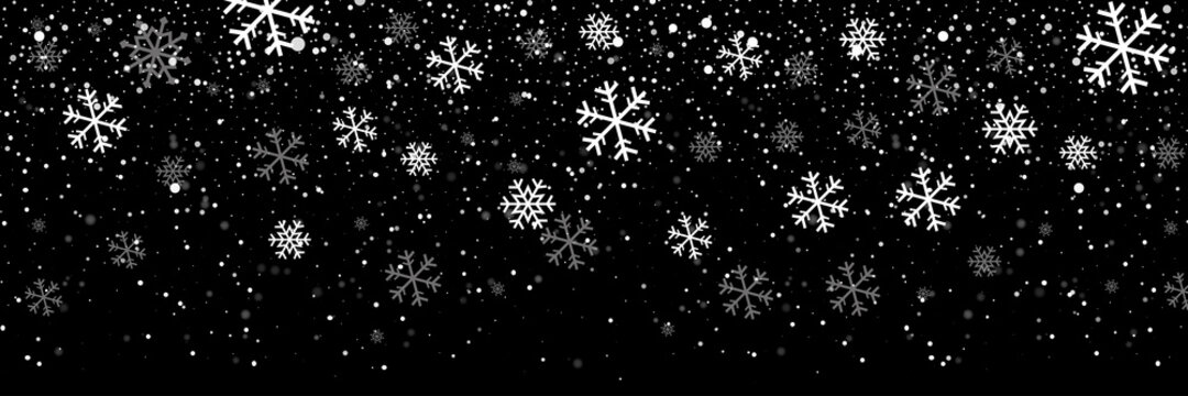 Falling snow on a transparent background. Snow. Snowfall, snowflakes in different shapes and forms. Snowfall isolated on transparent background. Vector illustration