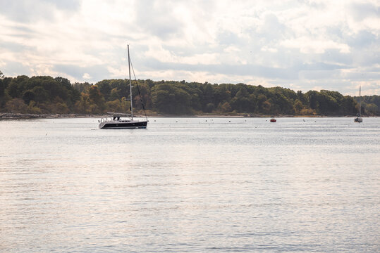 Tranquil scene with saiboats anchored in a bay with a forested shore in background