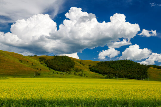 The summer prairie and cloudscape of Hulunbuir of China.