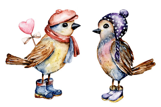 Birds, cartoon picture for baby. Watercolor hand painting winter holiday illustration, isolated on white.